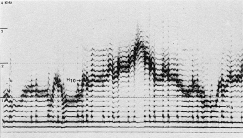 image spectrale